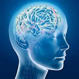 Onde Cerebrali - Theta Healing